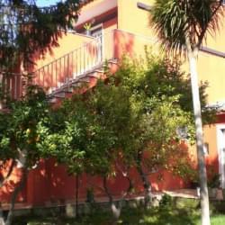 Irminio Garden